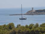 Barca a Pianosa
