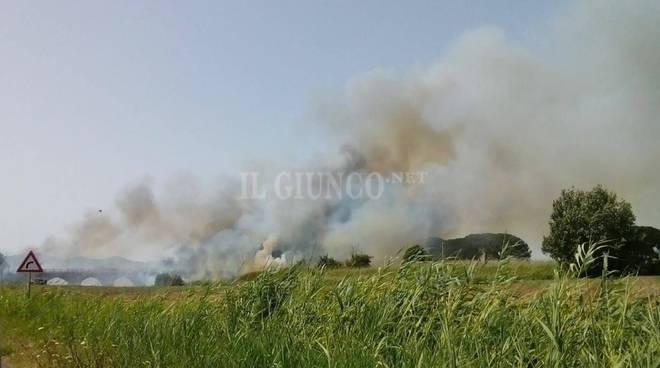 Incendi in Maremma, ancora in fiamme la periferia di Grosseto
