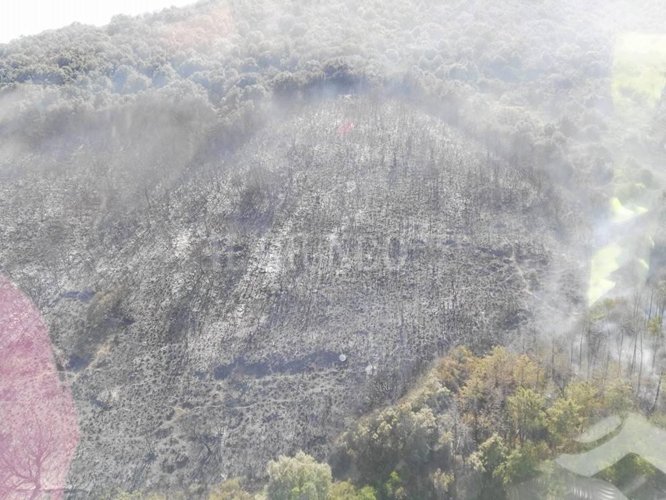 Incendio CdP 12 luglio 2016