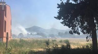 Incendio Scarlino Case luglio 2016