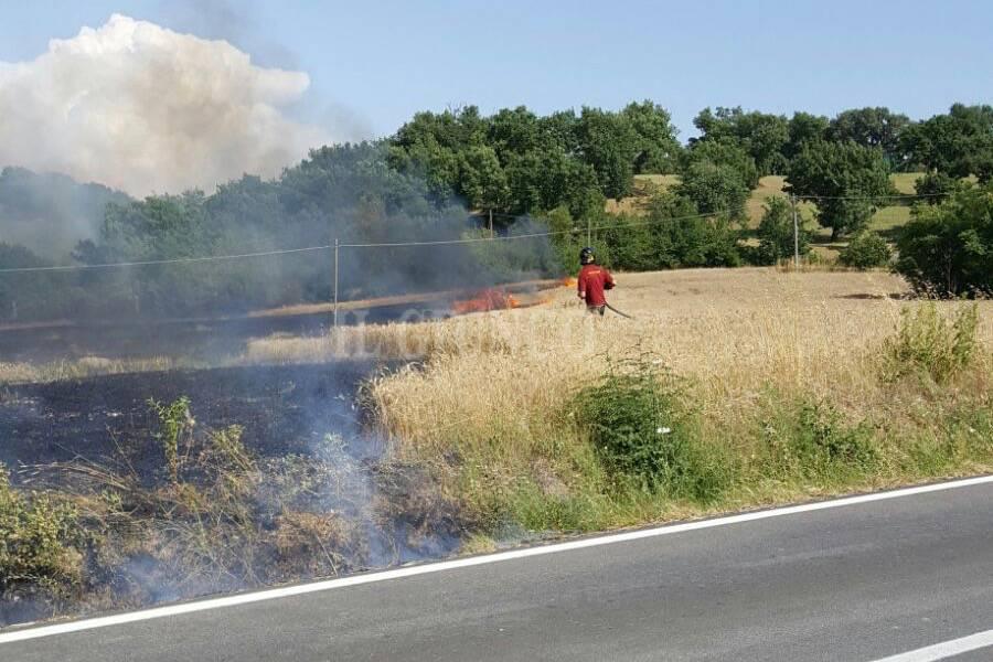 Incendio strada Chessa Arcille