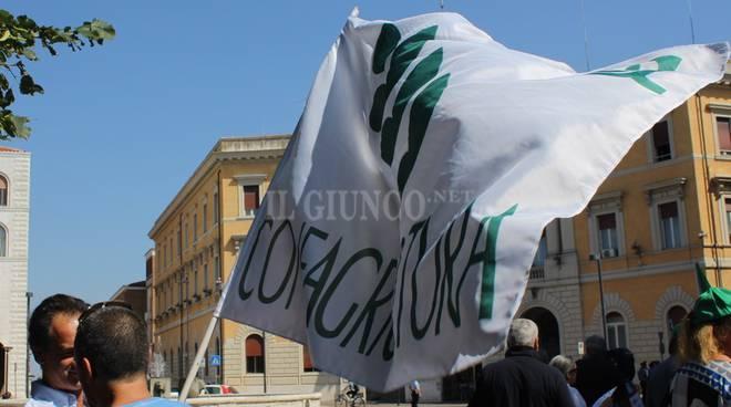 Toscana, sei incendi in un giorno dalla Lucchesia alla Maremma