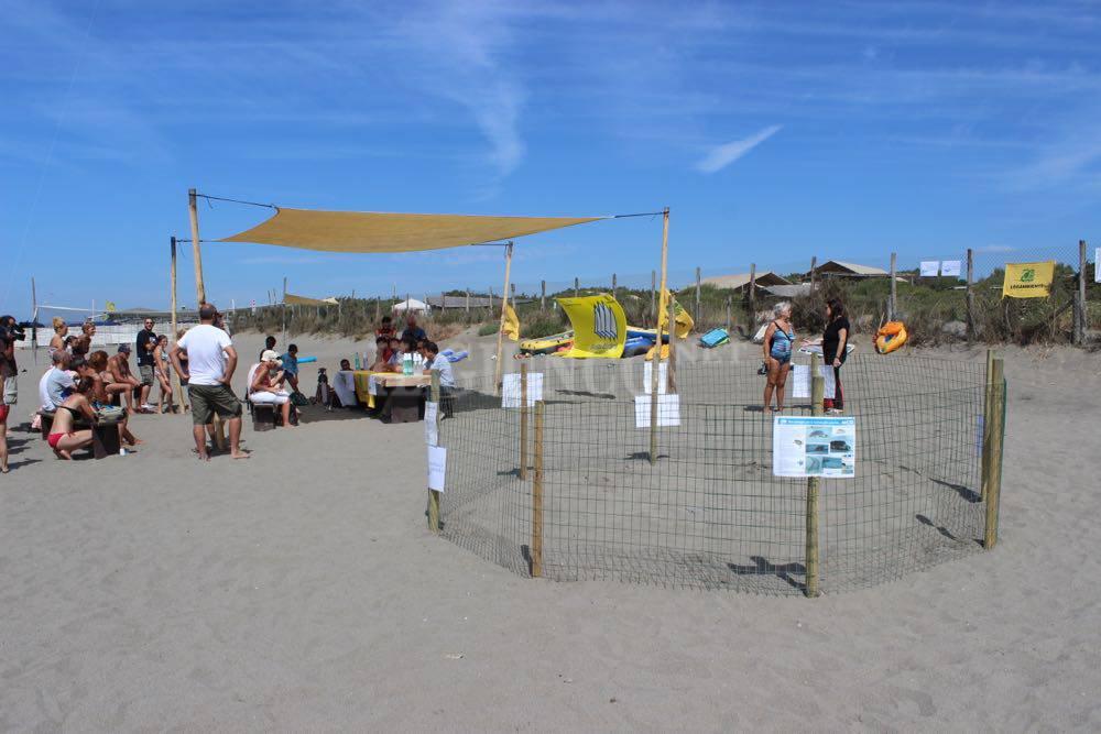 Capalbio Spiaggia 5 Vele