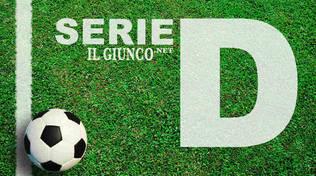 Icona Serie D