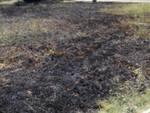 Incendio a Gorarella 2016