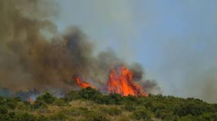 Incendio ansedonia agosto 2016