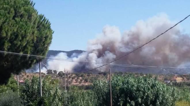Bruciano i boschi di Pian di Rocca
