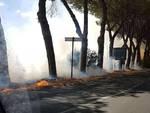 Incendio Rio Grande Principina