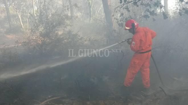 Toscana, domenica di fuoco: roghi all'Elba, brucia la Maremma