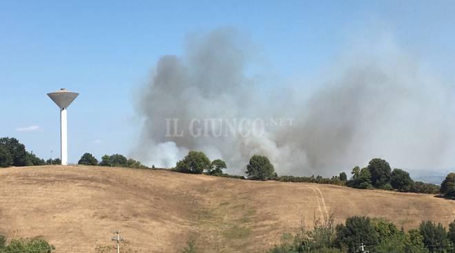 Incendio Scansano 29 agosto