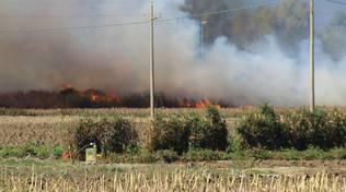 Incendio Mado settembre 2016