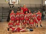 Libellule GEA Basketball
