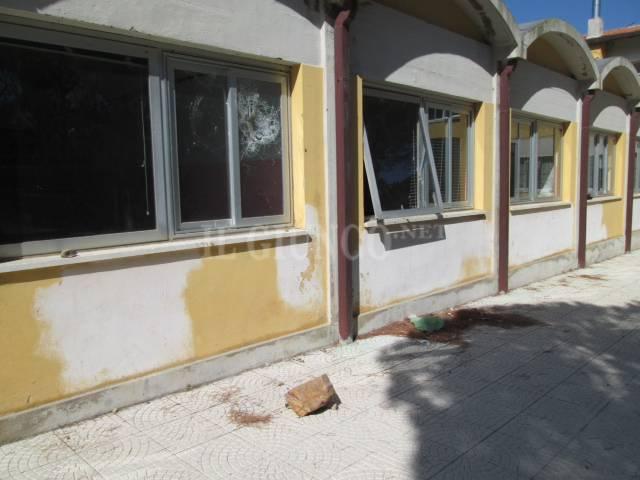 vandali scuola p. ercole
