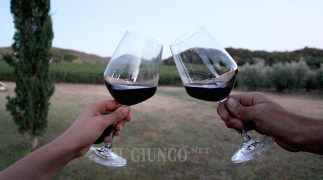 Coldiretti: Via libera al testo unico sul vino per una burocrazia dimezzata
