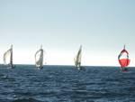 circolo nautico maremma soling