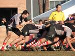 rugby grosseto 2017