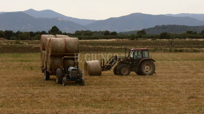 trattore agricoltura campagna