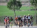 Ciclismo Marathon Bike