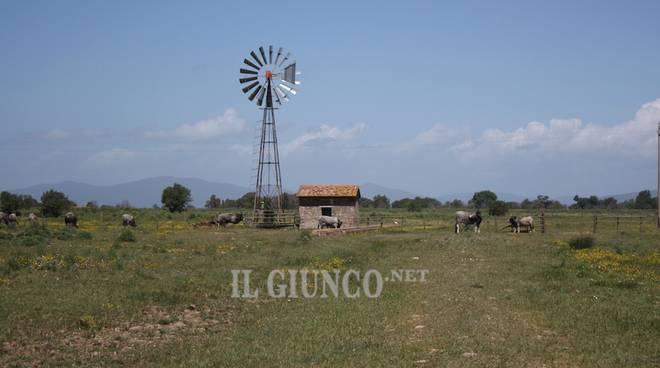 Campagna generica agricoltura