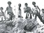 Film Piccoli naufraghi (1939)