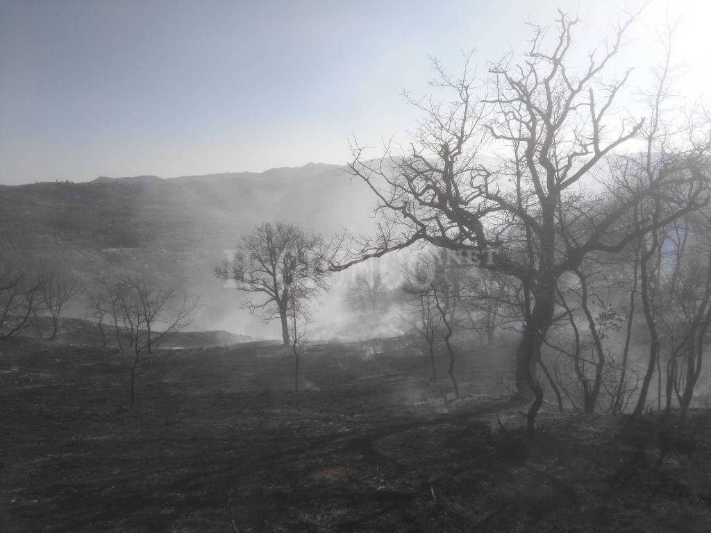 Incendio Seggiano