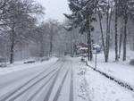 Neve Marzo 2017