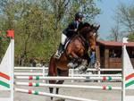 equitazione campionato maremmano