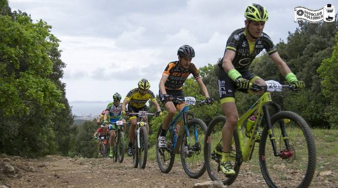 mountain bike maremma bike trophy