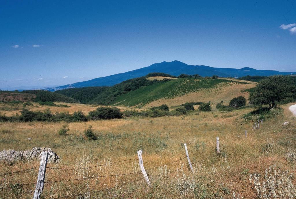 Parco faunistico Monte Amiata