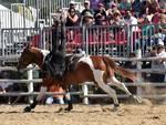 acrobati cavalli Game fair