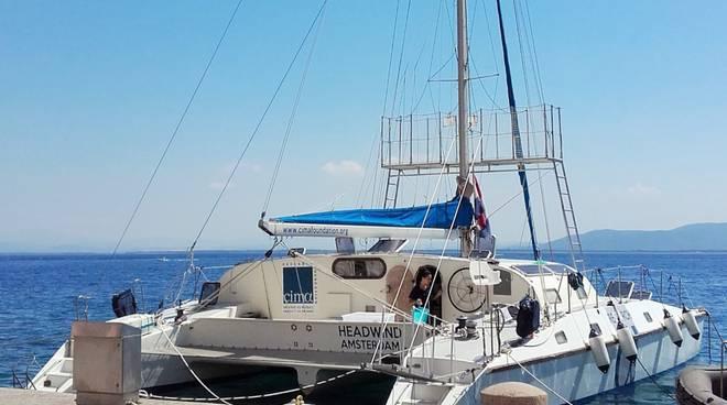 catamarano cetacei cima