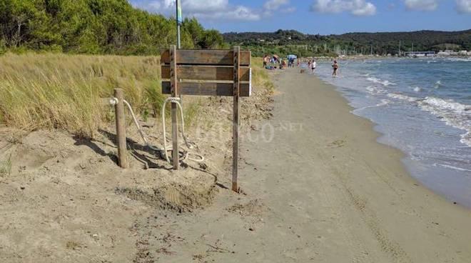 Spiaggia Scarlino erosione