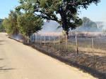 Incendio Casteani 2017