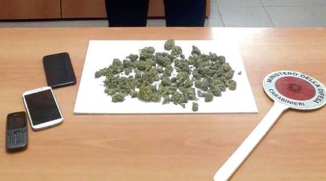Marijuana minorenne Arg