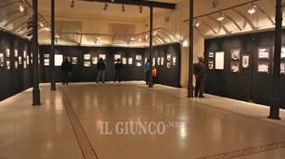 Pinacoteca Modigliani
