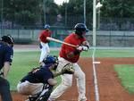 jolly roger baseball