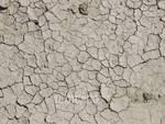siccità 2017