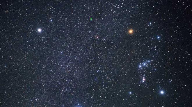 stelle stella