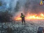 Incendio bosco Le Mandorlaie