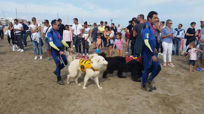 Riccione Pet Week