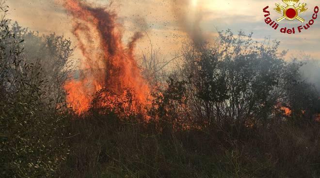 Incendi 28 ottobre 2017