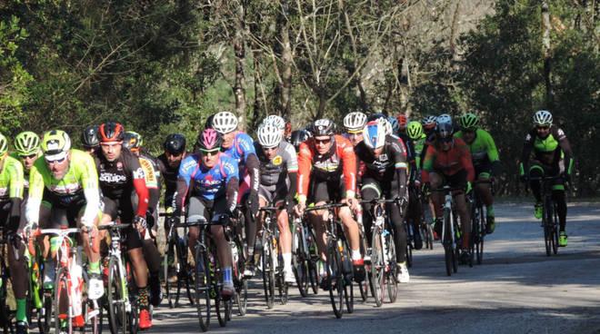 Sticciano Marathon bike