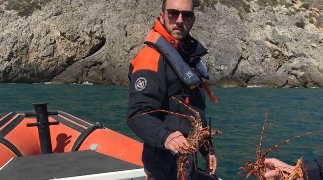 aragosta guardia costiera