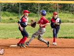 Baseball Bsc 1952 softball girl team