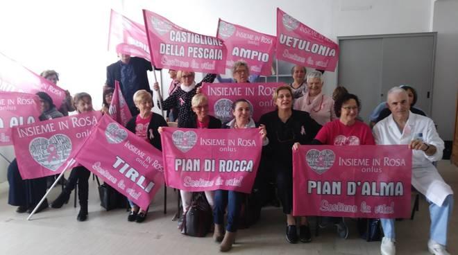 Elettrobisturi Insieme in rosa 2018