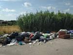 cassonetti rifiuti Ottava Zona