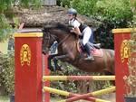 Equitazione Campionato Maremmano 2018