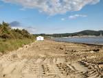 Erosione e ripascimento spiaggia Scarlino