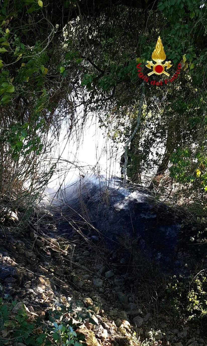 Col di sasso incendio Ulivi secolari (sett 18)