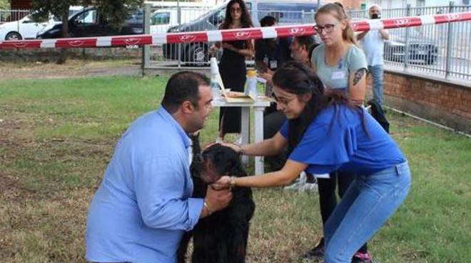 Expo cinofilia - mostra canina Acsi